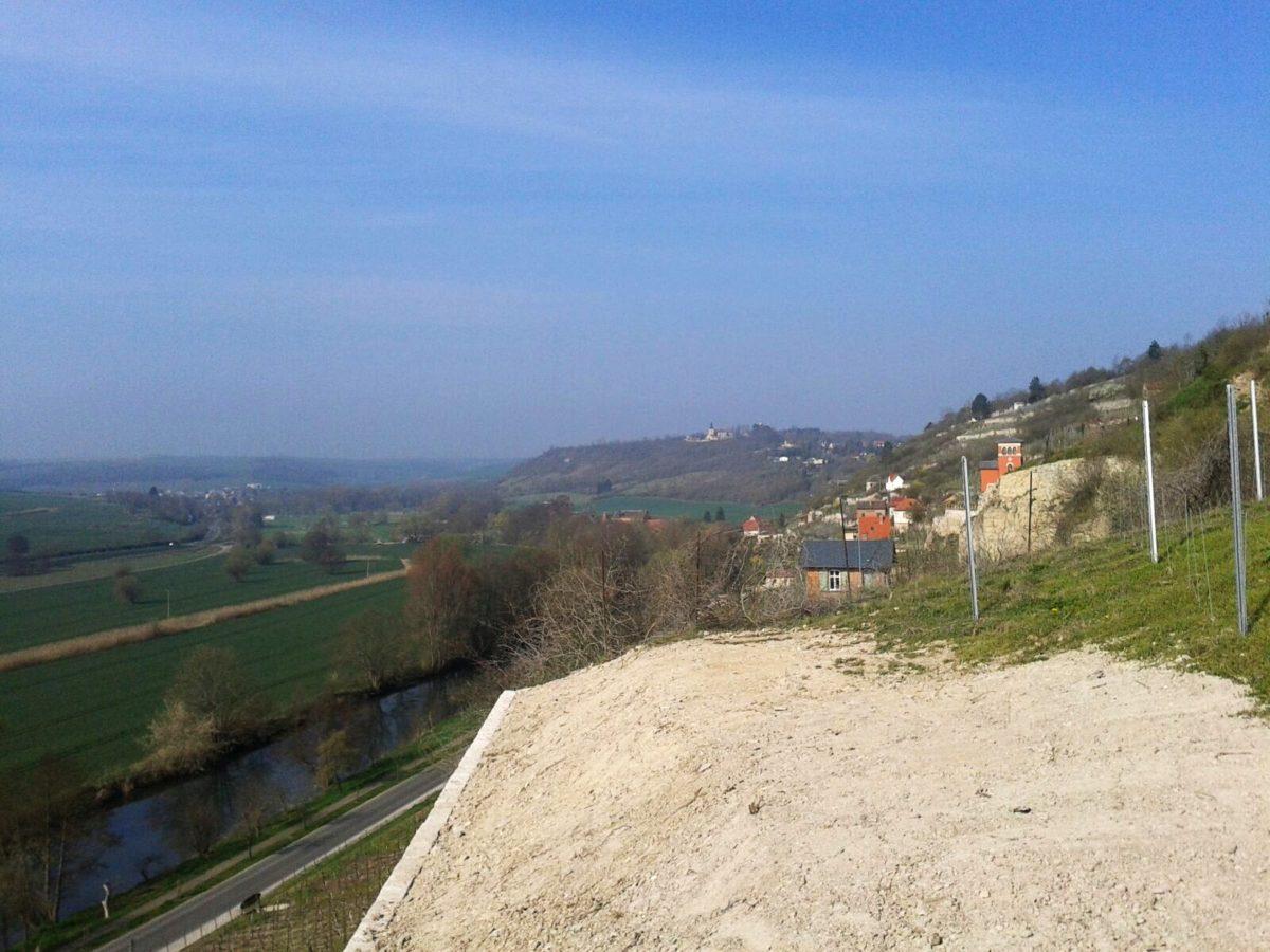 JK. Weinbergprojekt im Schweigenberg nahe Freyburg